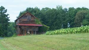 Tobaco Barns In Pittsylvania County - VirginiaLiving.com 24x40x12 Residentiagricultural Barn In Ashland Va Rmh14012 Another Beautiful Old Tobacco Barn Pittsylvania County Virginia Metal Garages Barns Sheds And Buildings Tomahawk Ribeye 46oz From Aberdeen Beach The Sierra Vista Wedding Venues Pinterest June 2017 Roadkill Crossing Mail Pouch Southern Indiana This Is A Few Mil Flickr Green Bank West On Farm Rural Pocahontas Tobacco Reassembled Albemarle Joseph Windsor Castle Smithfield Va These Days Of Mine Barnscountry Living