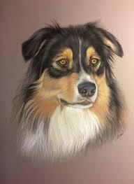 dessin au pastel de husky les pastels de vir collection chiens