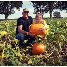 Motley Pumpkin Patch by Don U0027t Miss These 10 Great Arkansas Pumpkin Patches This Fall