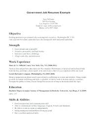 Government Job Resume Template Federal Examples