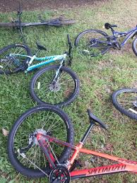 Some Of The Specialized Bikes We Used During Mountain Bike Trail Riding Clinic