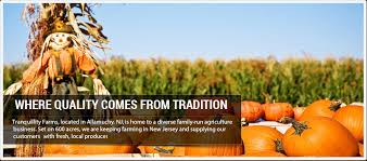 Pumpkin Picking In Chester Nj by Pumpkin Patch Tranquillity Farms Andover New Jersey