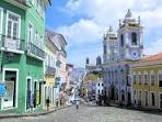 imagem de Pau Brasil Bahia n-11