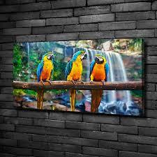 bilder leinwandbild kunst druck 100x50 bilder tiere