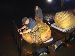 Atlantic Giant Pumpkin Record by Man Sets Out To Claim World Pumpkin Paddling Record On The Red