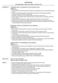 Download Vulnerability Management Resume Sample As Image File