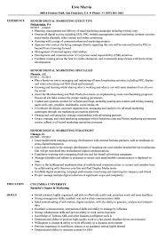 Download Senior Digital Marketing Resume Sample As Image File