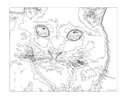 Cat Coloring Pages For Teenagers Difficult Color Number Paint By To Inside Adults Free Printables