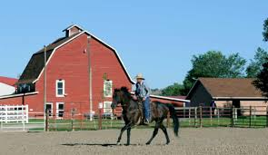 Horse Boarding, Training, And Lessons - Silt, Colorado | Red Barn ... Designing Your Stable For Fire And Emergency Safety Exploring Connecticut Barns Uconnladybugs Blog Barn Pros Projects Gallery Horses Pinterest Horse 111 Best Riding Arenas Animal Care Sheds Water Wheels Dog Breyer Classics 3horse Play Set Walmartcom Successful Boarding At Expert Advice On Horse Pasture In Central Alabama Shelclair 10 Tips Farms Stables To Get Ready Spring The Stanford Equestrian Horses Some Of The Horses At Barn Horseback Lancaster