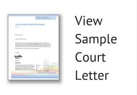 line Opportunities for Court Ordered munity Service Hours