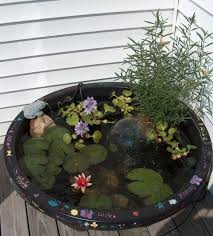 Aquascape Patio Pond Australia by 43 Best Vijvers Images On Pinterest Garden Garden Ideas And