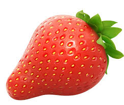 Strawberry clip art fruit images on art and