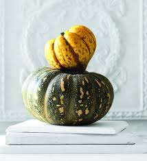 Types Of Pumpkins Grown In Uganda by How To With Pumpkins Mindfood