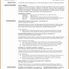 Awful Resume Format For Mis Executive Curriculum Vitae Doc 1224