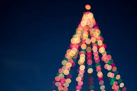 Art Blurred Blurry Bokeh Bright Christmas Decoration Decorations Lights Tree Colorful Colourful Design