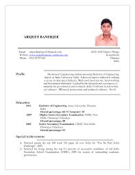 Working Student Resume Sample