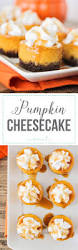 Libbys Marbled Pumpkin Cheesecake Recipe by Pumpkin Cheesecake Fall Treats Pumpkin Cheesecake And Cheesecakes
