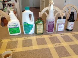 cleaning product experiments 5 stop the stomach flu