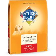 Pumpkin Rice For Dog Diarrhea by Amazon Com Nature U0027s Recipe Puppy Dry Dog Food Lamb Meal U0026 Rice