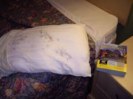Hidden Toxic Mold Your Pillow