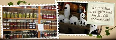 Closest Pumpkin Patch To Marietta Ga by Walter U0027s Pumpkin Patch Corn Maze And Family Farm In El Dorado