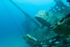 north america has a rich bounty of shipwrecks along the reefs and