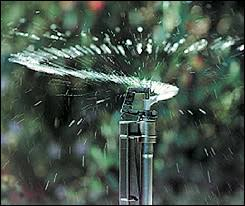 drip and low flow irrigation lee valley tools woodworking