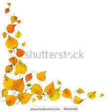 Beautiful Autumn leaves falling corner border isolated on white background