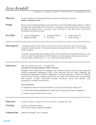 Resume Executive Summary Example Sales New Examples For Customer Service Beautiful Grapher Of