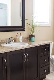 Best Plant For Dark Bathroom by Love The Dark Cabinets With The Light Marble And Tile Bathroom