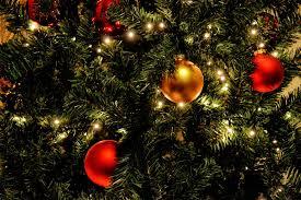 Swivel Straight Christmas Tree Stand Instructions by Images Of Christmas Tree Stand Manufacturers Halloween Ideas