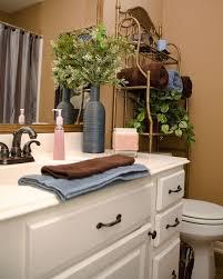 Good Plants For Bathrooms Nz by Bathroom Creative Bathroom Wall Decor With Nice Ideas Plants For
