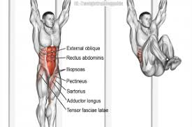 Hanging Leg Raisescaptains Chair Abs by Iliopsoas Archives Page 2 Of 3 Weight Training Guide