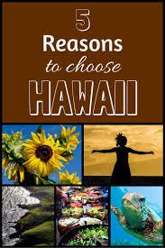 Pumpkin Patch Kula Hawaii by 138 Best Hawaii Vacation Activities Images On Pinterest Hawaii