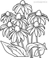 Printable Coloring Pages Flowers 16 25 Best Ideas About Flower On Pinterest