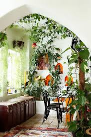 Kitchen Indoor Plants For The Jungle Garden Effect Grew Up With