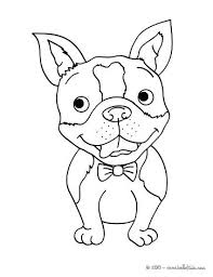 Cute Husky Coloring Pages Dog Siberian