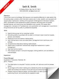 Project Manager Resume Objective Examples Samples