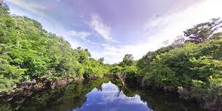 amazonia si e social view treks amazon about maps