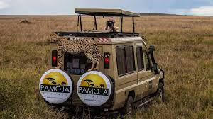 Pamoja Friends & Family Safari 2018 - Scott Brills Easter Jeep Safari Concepts Wagoneer Jeepster A Baja Truck And Pamoja Friends Family 2018 Scott Brills Renault Midlum 240 Expeditionsafari Truck Bas Trucks Mercedes Stock Photo Picture And Royalty Free Image Proud African Safaris Mcdonalds Building Blocks Youtube First Orange Tree Toys Elephant Edit Now Shutterstock Axial Rc Scale Accsories Safari Snorkel For Rock Crawler Truly The Experience Safari At Port Lympne Wild Animal Park Playmobil With Lions Playset Ebay