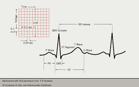 rr interval normal range the of bluffing the journal of cardiology