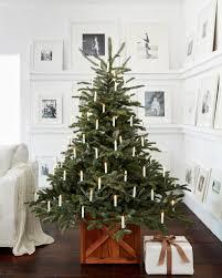 Popular Artificial Silver Tip Christmas Tree by European Fir Balsam Hill