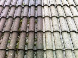 roof cleaning and moss removal fixed price gutter cleaning
