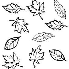 Dry Leaves In Fall Season Coloring Pages