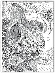 Fresh Printable Coloring Pages Adults For Download Owl Pdf Free Pinterest Sheets