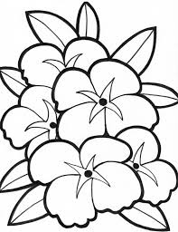Full Size Of Coloring Pagesoutstanding Pages Draw Easy Flowers Simple Beautiful Large
