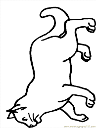 Coloring Pages Cat1 Mammals Cats