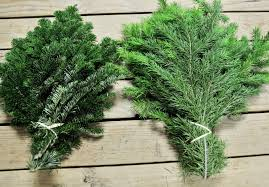 Royal Douglas Fir Artificial Christmas Tree by Your Guide To An Evergreen Christmas Flower Talk