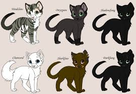 cat creator kitten maker my warriors by yolly anda on deviantart