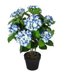 hortensia artificiel bleu en pot 70 cm homescapes
